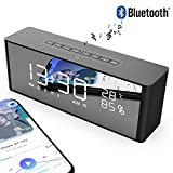 Altoparlante Bluetooth Senza Fili e Cassa Bluetooth Wireless con Radio FM e Microfono Supporto Chiamata Vocale Scheda TF AUX Display a LED Portatile e Universale