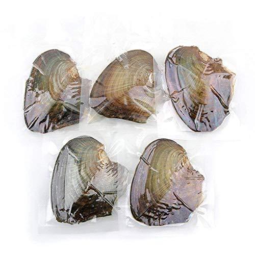DIVISTAR all' Ingrosso 10PCS Akoya ostriche con coltivato Perle Ovale Interno Regali di Compleanno (7.5–8mm)