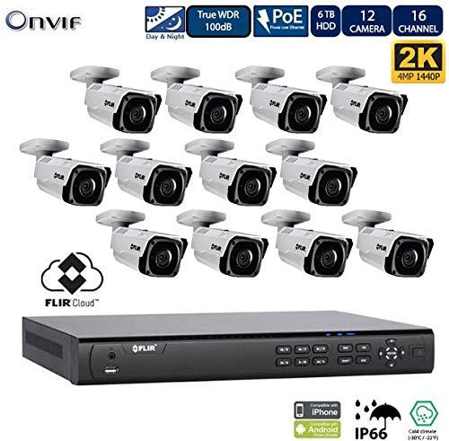 Flir Digimerge IP Security Kamera Sytem mit Dnr400P Serie 2 Festplatteneinschübe Nvr Und Flir N243Bw4 4 Mp (2K) Außennetz mit Vandalismusschutz Kugelkamera (12 Einschuss mit 16-Kanal-6TB NVR) - Lorex-security-kamera