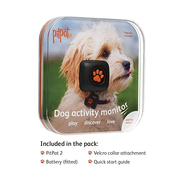PitPat Dog Activity Monitor and Fitness Tracker - Lightweight and waterproof with no recharging or subscription (latest version, as seen on television) 4
