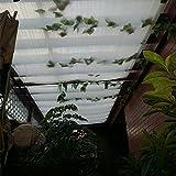 Frilivin Sonnensegel Rechteckig Sonnenschutz Garten UV Schutz Premium Schatten Tuch Markisen Weiß (1x2m)