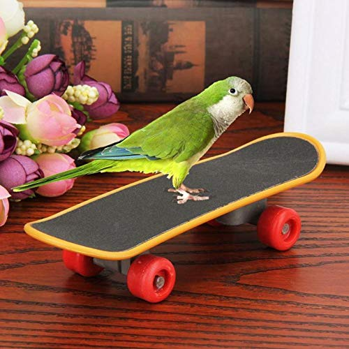 Ruluti 1pc Minitrainings Spielen Skateboarden VöGel Interaktion Spielzeug-Papageien-Skateboard VöGel Acrobatics Lustige Sittich Pet Supplies