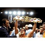 Rocky 2 Victory pop Art Póster de la película A2