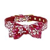 CAOQAO verstellbare anmutige niedliche gedruckte Bowknot-Halskette - Katze-Welpen-Halskette - für Katze, Kätzchen, Welpen, Kleiner Hund - Rot/Lila/Blau/Rosa - Größe 4