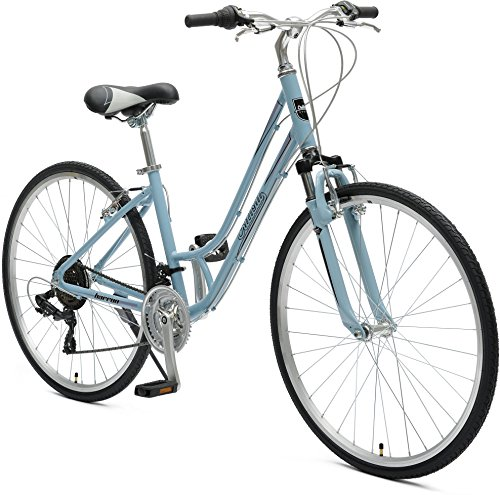 Critical Cycles Damen Barron Hybrid Bike 21 Speed Lady's Step-Thru 16in (S) Bicycle, Powder Blue, Small (Hybrid Cross)