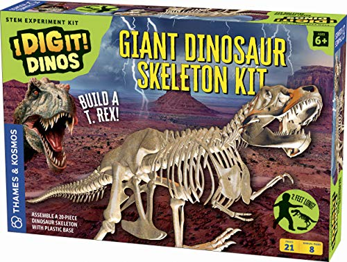 Giant Dinosaurier Skelett Kit Science Experiment, Multi ()