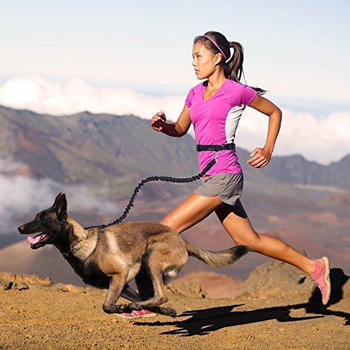 Hundeleine Jogging, PETBABA 86cm Lang Hände Frei Elastisch Reflektierend Nylon Training Hunde Leine mit Bauchgurt für Hunde Schwarz -