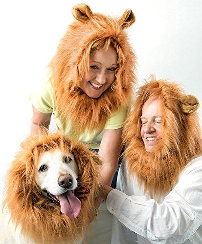 Großer Löwenmähne Mit Kostüm Hunde - Pet Hero Löwenmähne Hundekostüm mit Ohren für mittelgroße bis große Hunde - Bonus gratis Löwenschwanz - großer Spaß für Das Ganze, Das zurück gibt