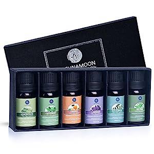 Lagunamoon Ätherische Öle Set 100% Pure Aroma Öle,für therapeutische Aromatherapie/Diffuser/Lufterfrischer Geeignet, Orange Lavendel Teebaum Pfefferminz Eukalyptus Zitronengras
