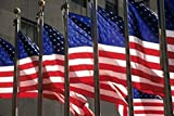 David Barnes / DanitaDelimont – US Flags in Rockefeller Plaza New York Photo Print (91,44 x 60,96 cm)