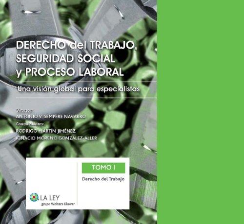 Derecho del trabajo, Seguridad Social y proceso laboral: Derecho del trabajo: Una visión global para especialistas: 1