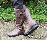 Gallop Equestrian Ranger Country Stiefel, braun, EU 41