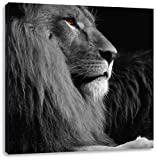 wunderschöner stolzer Löwe schwarz/weiß, Format: 70x70 auf Leinwand, XXL riesige Bilder fertig gerahmt mit Keilrahmen, Kunstdruck auf Wandbild mit Rahmen, günstiger als Gemälde oder Ölbild, kein Poster oder Plakat