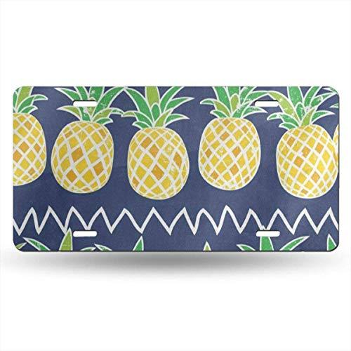 License Plate Frame Cartoon Pineapple Fruit Summer Retro Customized Aluminum Metal Tag Holder Waterproof Decoration 12 x 6 Inch