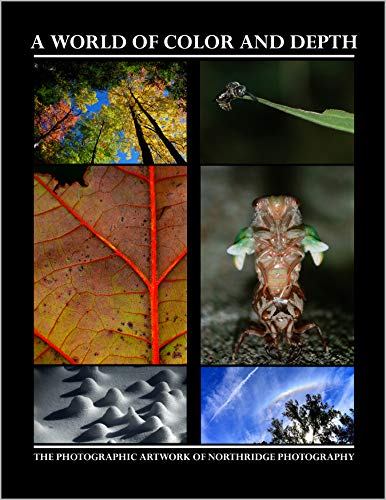 A World of Color and Depth: The Photographic Artwork of Northridge Photography (English Edition)