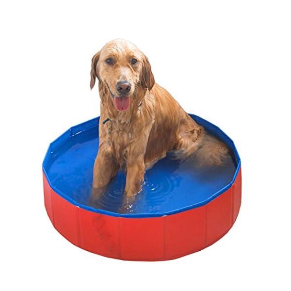 Foldable Large Dog Pet Pool Bathing Tub 1