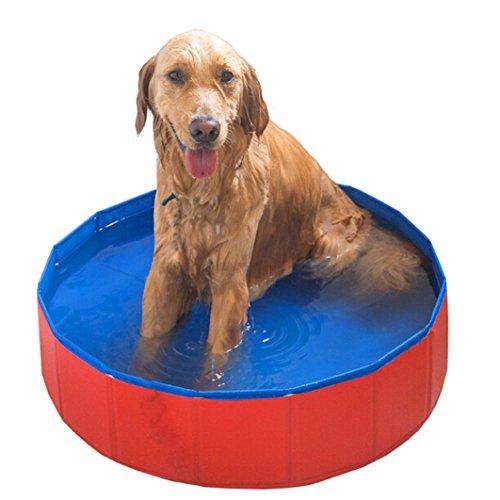 Metall-gitter-pool (Foldable Large Dog Pet Pool Bathing Tub)