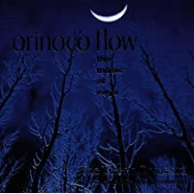 Orinoco Flow: Enya for Orchest
