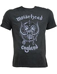 AMPLIFIED Herren T-Shirt MOTÖRHEAD anthrazit