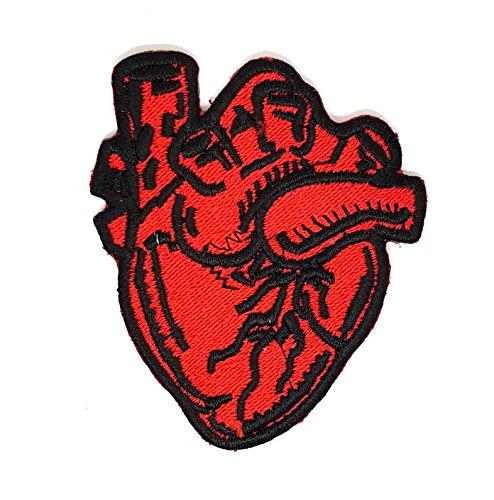 ARTERIA Anterior (PA) Brust X-Ray Anatomisches Herz | Stickerei Hohe Qualität Eisen auf Sew auf Patch Abzeichen für Kleidung Jacken T-Shirts Mäntel Taschen Hüte Geldbeutel