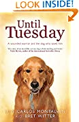 #6: Until Tuesday
