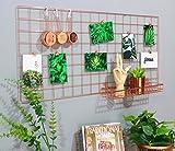 "Rumcent Rose Gold Gridwall Photo Display,Metal Mesh Panel,Wall Decor/Photo Wall/Wall Art Display & Organizer,Pack of 1 Pcs,Size: 17.7"" x 37.4""/45x95cm"