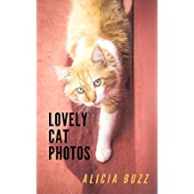 LOVELY CAT PHOTOS (cute cat book Book 1) (English Edition)