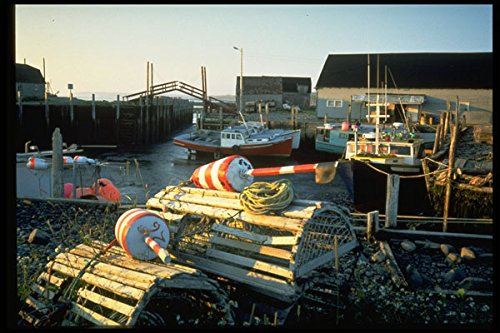 731056-lobster-traps-a4-photo-poster-print-10x8