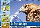 Tiere der Alpen: Steinbock, Gams und Murmeltier (Wandkalender 2018 DIN A3 quer): Tiere in den Bergen finden dort wo das Edelweiß blüht ... [Kalender] [Apr 01, 2017] CALVENDO, k.A.
