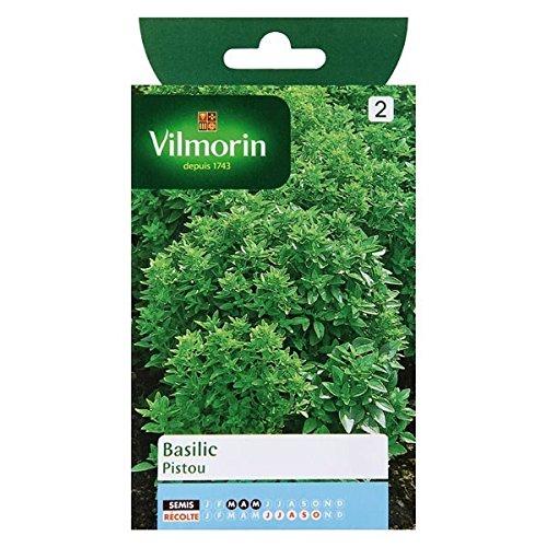 Vilmorin - Sachet graines Basilic Pistou