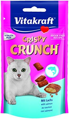 Knusprige 15 Protein (Crispy Crunch  Lachs  60g  KA)