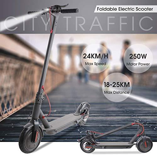 BEBK Elektroroller, Elektro Scooter mit 250W Motor/LG Batterie, Höchstgeschwindigkeit 20Km/h/Maximale Belastung 120kg, klappbar E Scooter (M11)