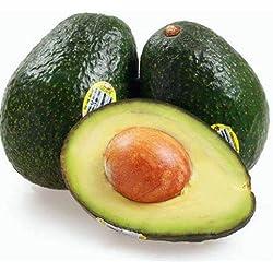 KINGDUO 10Pcs/Pack Avocat Graines Persea Americana Mill Poire Semences Diy Santé Salade De Fruits