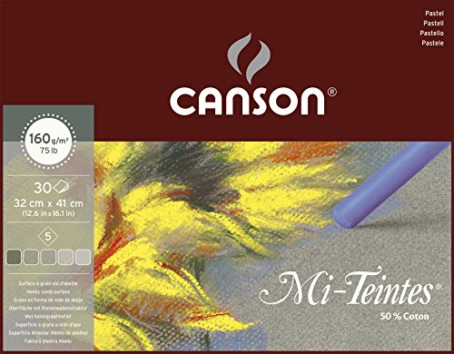 Canson 400030145 Mi-Teintes farbiges Zeichenpapier, 32 x 41 cm, 5 Farben sortiert, grau-Töne -