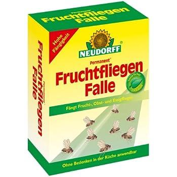 Hausmittel Gegen Obstfliegen fruchtfliegenfallen set mit 2 trichterfallen amazon de garten
