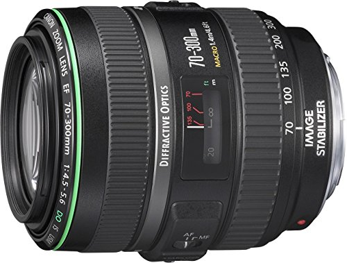 Get Canon EF – Telephoto zoom lens – 70 mm – 300 mm – f/4.5-5.6 DO IS USM – Canon EF on Line