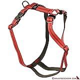 Feltmann Premium Hundegeschirr mit Alu-Max®, Soft- Nylonband, 75-100cm, 25mm, Streifen orange