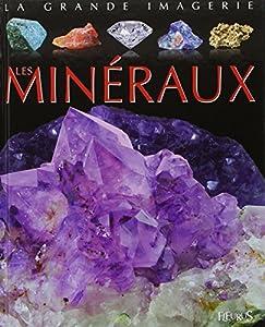vignette de 'Les minéraux (Jacques Beaumont)'