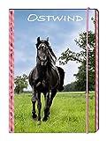Ostwind - Frühjahr 2019: Sammelmappe A4