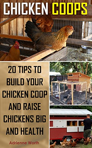 chicken-coops-20-tips-to-build-your-chicken-coop-and-raise-healthy-and-strong-chickens-chicken-coop-