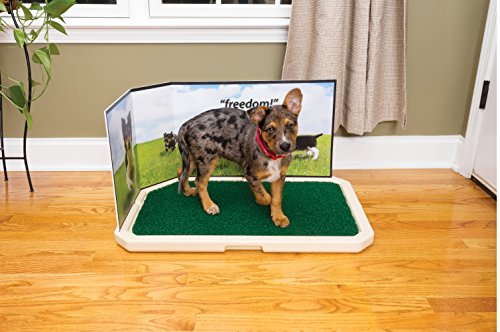 PetSafe Piddle Place Guard for Pet Potty 4