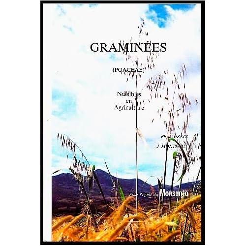 Graminées (poaceae) nuisibles en agriculture