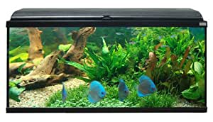 Aquatlantis - Aquarium Aquadream 104 - Noir