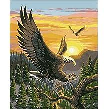 dorara DIY pintura al óleo para adultos niños pintura por número Kit Digital pintura al óleo Eagle 16x 20pulgadas