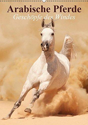 Arabische Pferde • Geschöpfe des Windes (Wandkalender 2019 DIN A2 hoch): Die edlen Pferde der arabischen Wüste (Monatskalender, 14 Seiten ) (CALVENDO Tiere)