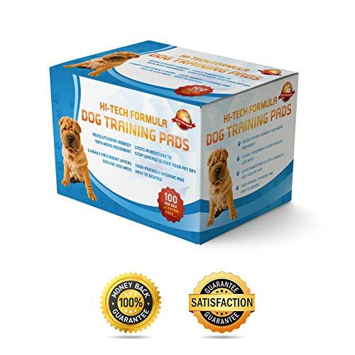 100 Empapadores Para Entrenar A Cachorros + 5 Extra GRATIS | 60 cm x 60 cm Nuevo Tamaño Superabsorbente | Esta Nueva Y Unica Solución De 5 Capas Protege Las Alfombras De Los Suelos Laminados Del Olor