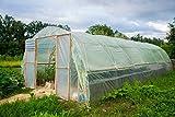 PROFI UV4 Folie 5 x 6 m Gartenfolie Gewächshausfolie Tomatenhaus