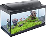 Tetra Regular Starter Line Aquarium-Komplettset mit LED-Beleuchtung stabiles 105 Liter