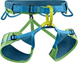 EDELRID Allround Klettergurt Jay 3 Sitzgurt, Länge:M, Farbe:Green Pepper (785)