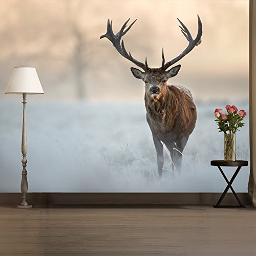 red-stag-cerf-a-winter-sunrise-paysage-peint-animal-photo-wallpaper-disponible-en-8-tailles-grand-nu